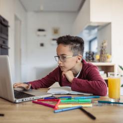 Online doučovanie
